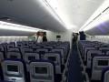 Индус в самолете чуть не изнасиловал спящую девушку