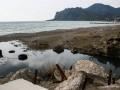 Заборы и унылые пляжи: как сейчас выглядит  Коктебель