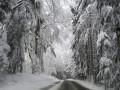 Погода на неделю: С понедельника будет сыпать снег, но к пятнице потеплеет