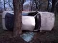 В Николаеве водитель, пытаясь скрыться от полиции, врезался в дерево и погиб