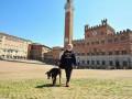 Площади Рима заросли травой из-за отсутствия людей