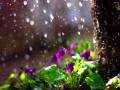 Весна почти началась: Синоптик объяснил, когда потеплеет окончательно