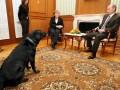 Собака Путин: Россия возмущена статьей немецкого журнала