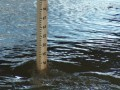За май в водоемах утонули 38 человек - ГосЧС