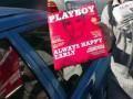 Святому письму вопреки: Playboy теперь будет выходить в Израиле на иврите