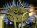 В марте Украина почти не закупала российский газ - министр
