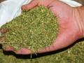 В Украине могут официально разрешить использовать марихуану