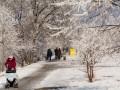 Погода на выходные: синоптики обещают морозы