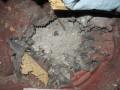 Ветеран АТО подорвался на гранате под Киевом