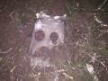 В зоне ООС военные сбили беспилотник Орлан-10