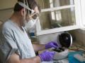 В связи с распространением вируса Эбола в Малайзии усиливают санитарный контроль