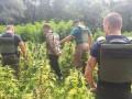Правоохранители пресекли контрабанду наркотиков в Крым и РФ