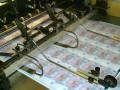 Рай для коллекционеров: НБУ продаст неразрезанные гривны рулонами
