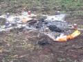 В Одесской области сатанисты сожгли человека