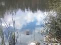 Подсыпали снотворное и утопили: В Житомирской области задержали убийц водителя
