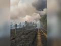 Пожары в Чернобыльской зоне взяты под контроль – ГСЧС