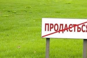 Ежегодно Украина теряет 22 млрд долл из-за моратория на землю