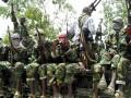 В Нигере террористы сожгли 800 домов и убили 28 человек