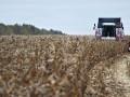 Одесским аграриям частично возместят потери из-за засухи