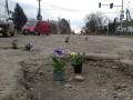 Цветочный флешмоб: на Закарпатье посадили в ямы на дорогах цветы к приезду гаранта