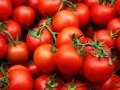 В Украину завезли 38 тонн зараженных помидоров из Турции