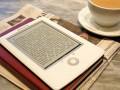 Электронные книги будут еще дороже