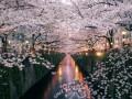 Весна: названы лучшие туристические направления сезона