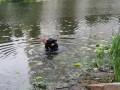 В реке в Киеве обнаружили расчлененное тело женщины