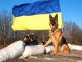 Четверолапые патриоты: животные в зоне АТО