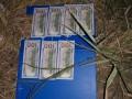 НАБУ расследует 194 производства, 24 из них уже переданы в суд