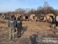 Правоохранители обнаружили миллионные хищения леса в двух областях
