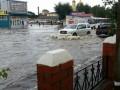 В российском Уссурийске паводком затопило зоопарк