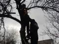 В Киевской области спасли мужчину, застрявшего на дереве