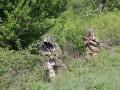 Обострение на Донбассе: 17 обстрелов, погиб боец