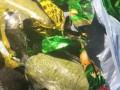 На границе с Россией задержали украинца, перевозившего наркотики под видом конфет