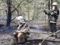 На Житомирщине потушили еще один лесной пожар