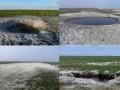 Экологи: ВСУ провели учения в заповеднике, ущерб 12 млн грн