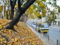 Осень в Украине побила 8 температурных рекордов