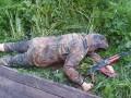 Опубликованы жуткие фото массового расстрела на Житомирщине