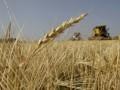 В Европе отменят дотации на производство биотоплива