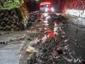 Сверхмощный тайфун в Японии: двое погибших, 70 раненых