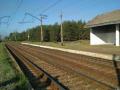 В Донецкой области поезд отрезал мужчине ногу