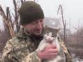 Военный рассказал трогательную историю дружбы с котом в АТО