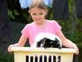 И никакого запаха: Девочка завела дома скунса (ФОТО)