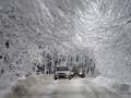Снегопады в Украине: дороги перекрыли в двух областях