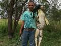 В США поймали лягушку ростом с человека