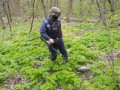 На Донбассе минами загрязнено 21 тыс км² украинской земли