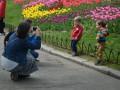 В Киеве открылась выставка тюльпанов