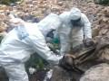 В Мексике обнаружили около 50 тонн наркотиков