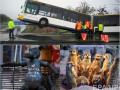 День в фото: Киевский волк, автобус на перилах и сурикаты под лампой